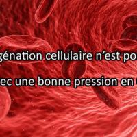 Effets du CO2 sur l'homme : oxygénation, dilatation et sédation