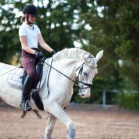 Comment bien gérer le stressavant un concours d'équitation?