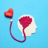 Comment développer son aisance émotionnelleen société ?