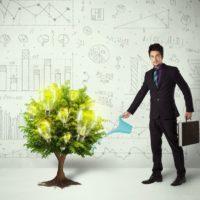 Comment faire un arbre de vie et l'utiliser au quotidien?